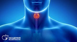 Как похудеть при проблемах с щитовидкой?