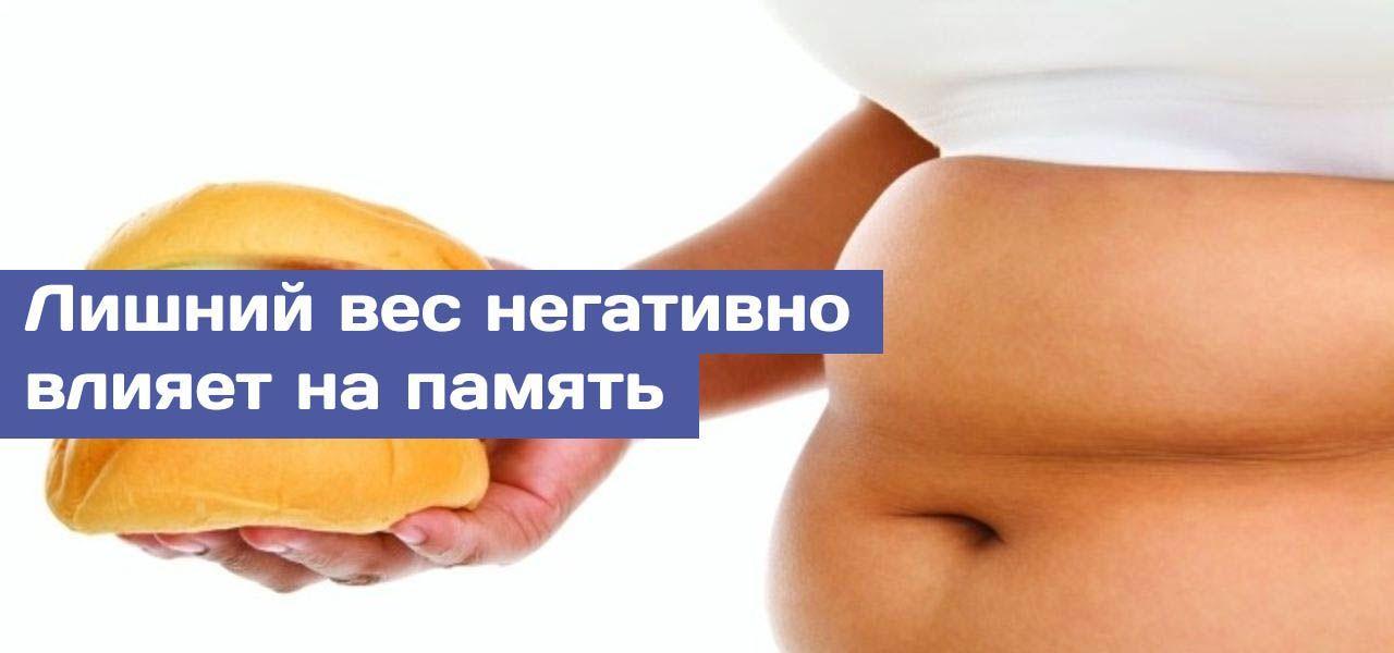 ожирение и мозг