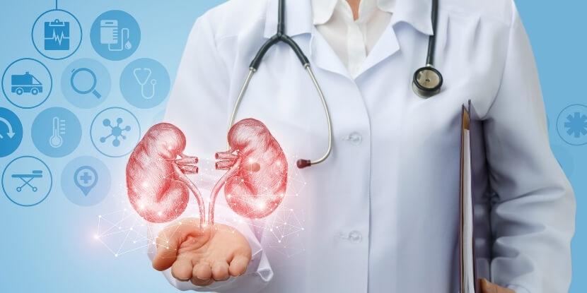Почки-и-врач-лечебное-питание-при-болезнях-почек-Академия-Wellness-Consulting