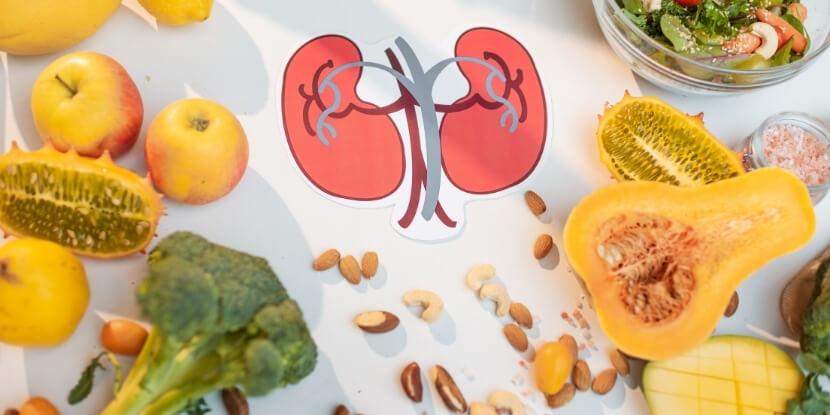Почки-и-правильное-питание-лечебное-питание-при-болезнях-почек-Академия-Wellness-Consulting