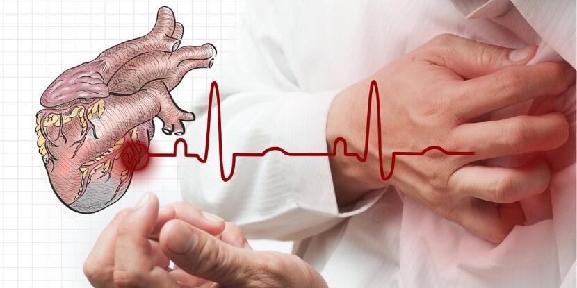 Сердце-и-пульс-лечебное-питание-при-болезнях-сердца-и-сосудов-Академия-Wellness-Consulting
